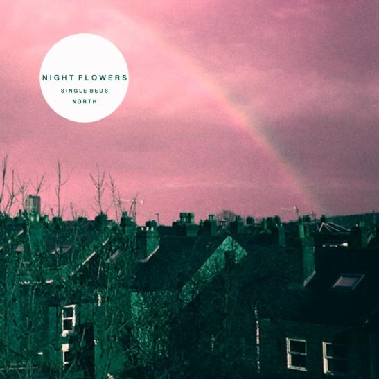 nightflowers2