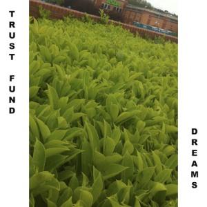 trustdreams